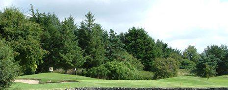 Shannon Golf Club - Swing Golf Ireland - Ireland Golf Holidays